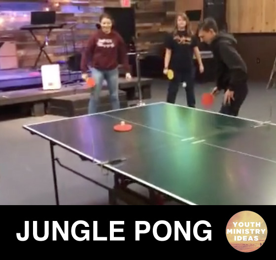 How to Play Jungle Pong - Jungle Pong Instructions