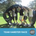 team-hamster-race