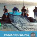 human-bowling