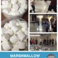 marshmallow-snowball-fight